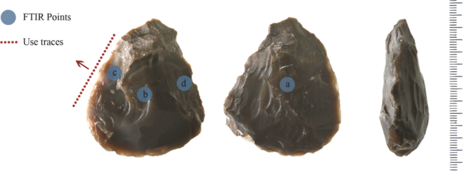 Fig. 9. A handaxe with residues of animal fat.